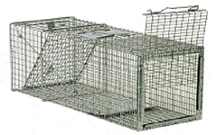 SAFEGUARD REAR RELEASE BOX TRAPS
